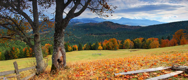 Autumn in mountains. The mountain autumn landscape with colorful forest Stock Photo