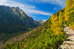Autumn mountains Stock Image