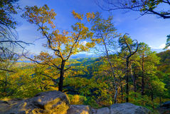 Autumn in Mountains. Autumn in the forest, Poland, Sudety Mountains stock photography