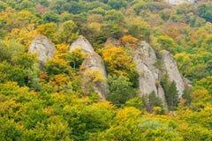 Autumn in mountains. Stock Image
