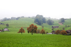 Autumn in mountains. Misty autumn in swiss mountains royalty free stock images