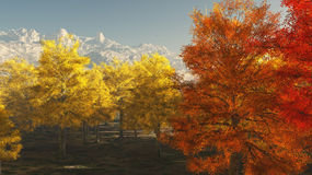 Autumn in the mountains Stock Image