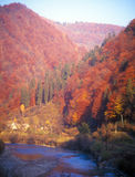 Autumn in mountains. Royalty Free Stock Images