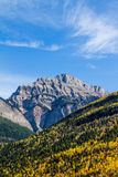Autumn in mountains. With blue sky and forest royalty free stock photos