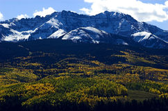 Autumn in the mountains. Autumn colors of land near telluride ski area with snow covered peaks of the san juan mountains royalty free stock image