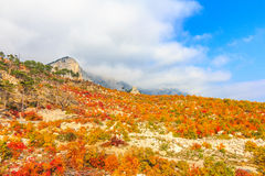 Autumn Mountains Stock Fotografie