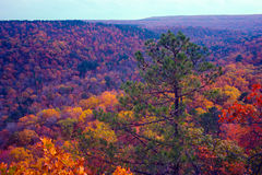 Autumn Mountains. Ozark autumn turning the mountains into a colorful vista stock photo