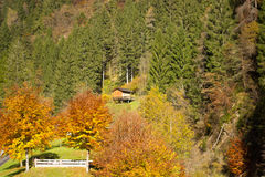 Autumn on the mountains Royalty Free Stock Images