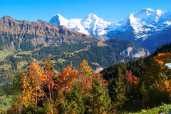 Autumn in the Mountains, the Alps, Switzerland Stock Images