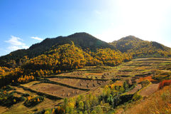 Autumn mountains. 2014.10.1 on china  Autumn mountains Stock Photography