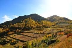 Autumn mountains Stock Photography