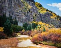 Autumn in the Mountains. Autumn color along a mountain creek in Colorado stock photos