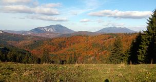 Autumn in the mountains. Fall in the mountains with colorful forest Stock Photos