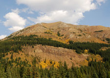 Autumn mountains and forests. Colorful autumn view of rocky mountains and forests in kananaskis country, alberta, canada Royalty Free Stock Photo