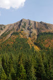 Autumn mountains and forests Stock Photography