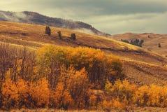 Autumn mountains Stock Image
