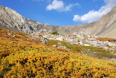 Autumn mountains and meadows Royalty Free Stock Photography