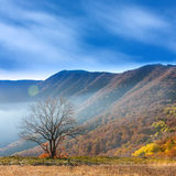 Autumn in mountains Stock Image