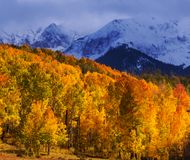 Autumn mountains Royalty Free Stock Photos