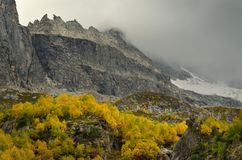 Autumn in mountains. This is somber day in Caucasus mountains in autumn Royalty Free Stock Photo