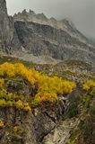 Autumn in mountains. This is somber day in Caucasus mountains in fall Royalty Free Stock Photo