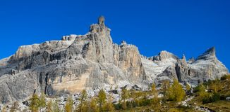 Autumn mountains yellow trees landscape in Dolomiti di Brenta, Italy. Dolomiti di Brenta, Italy, the Dolomites. Beautiful rocky peak tower mountains Alps in stock photos