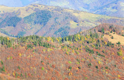 Autumn mountainside view Royalty Free Stock Images