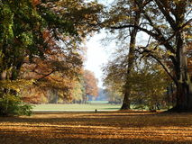 The autumn is multicolored. Autumn landscape  in Park Branitz Stock Images