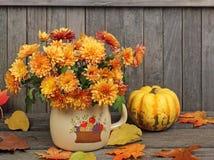 Autumn Mums. Orange autumn mums in a pot against a wood fence Stock Photos