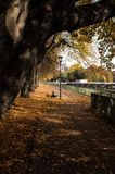 Autumn in Munich. At the side walkway near river Royalty Free Stock Photography