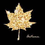 Autumn muple leaf, gold glitter vector design. Hello autumn card with cute maple leaf. Banner, icon, or sale poster. Gold glitter design on the black background Royalty Free Stock Photo