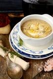 Autumn mushroom soup Royalty Free Stock Photo
