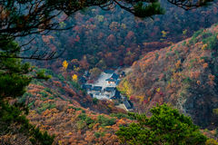 Autumn In  Naejangsan South Korea Stock Photography