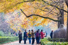 Autumn in Nanjing Mingxiao Mausoleum royalty free stock photo