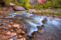 Autumn of the narrows and Virgin River in Zion National Park Zio Royalty Free Stock Photography