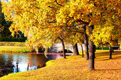 Autumn natural background Royalty Free Stock Photos