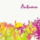 Autumn Natural Background Vector abstracto Foto de archivo