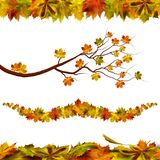 Autumn natural border. Vector stock illustration