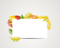 Autumn Natural Leaves Background brilhante Vetor Foto de Stock Royalty Free