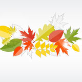 Autumn Natural Leaves Background brilhante Vetor Foto de Stock