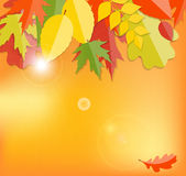 Autumn Natural Leaves Background brillant Vecteur Photos stock