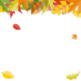 Autumn Natural Leaves Background brillant Vecteur Images stock