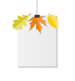 Autumn Natural Leaves Background brillant Vecteur Images libres de droits
