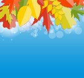 Autumn Natural Leaves Background brillant Vecteur Photos stock
