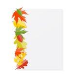 Autumn Natural Leaves Background brillante Vector Imágenes de archivo libres de regalías