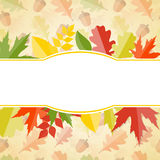 Autumn Natural Leaves Background brillante Vector Imagenes de archivo