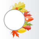 Autumn Natural Leaves Background brillante Vector Imagen de archivo
