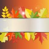 Autumn Natural Leaves Background brillante Vector Imagen de archivo libre de regalías
