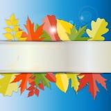 Autumn Natural Leaves Background brillante Vector Fotos de archivo