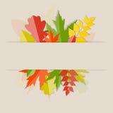 Autumn Natural Leaves Background brillante Vettore Fotografia Stock